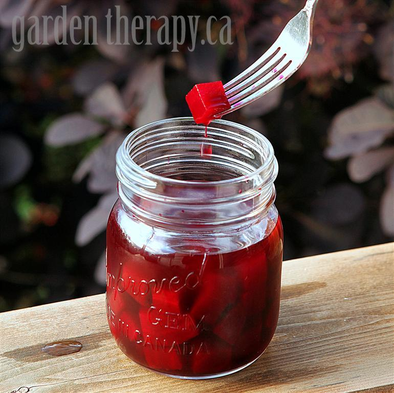 Tarragon Pickled beets