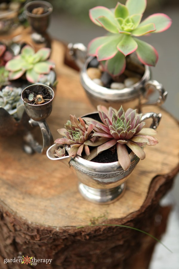 using vintage silver dishes as planters