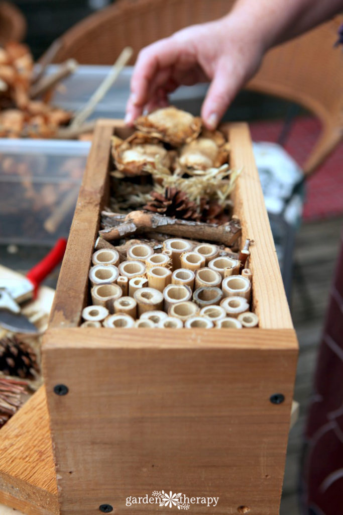 Making a bug hotel that attracts ladybugs, bees, and other beneficial insects