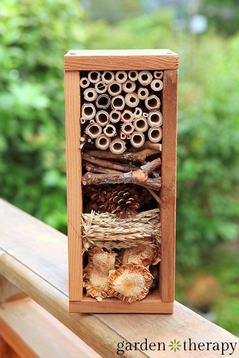 Overwinter beneficial insects - How to Build a Bug Hotel