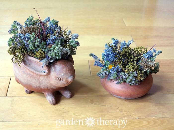 Preserving the ornamental garden