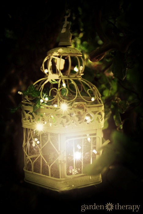 White String Garden Lights : birdcage outdoor garden light with warm white string lights - Garden Therapy