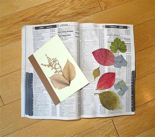 phone book flower press