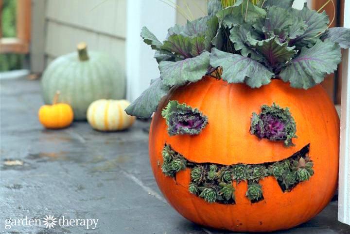 How to Make Jack-o-Planterns cute and creepy