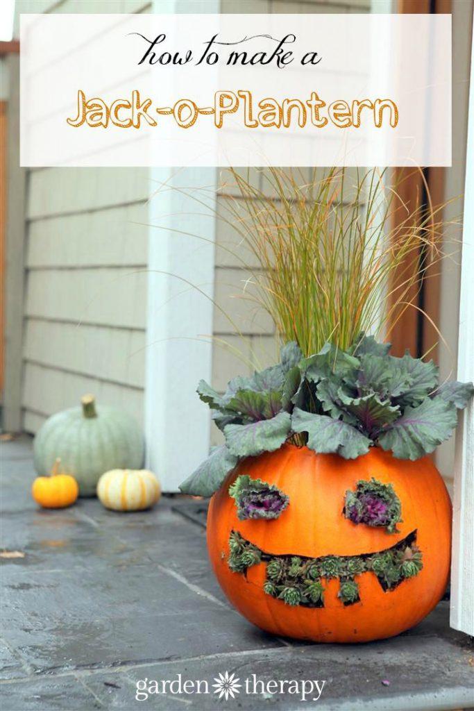 How to Make Jack-o-Planterns: cute but a little creepy!