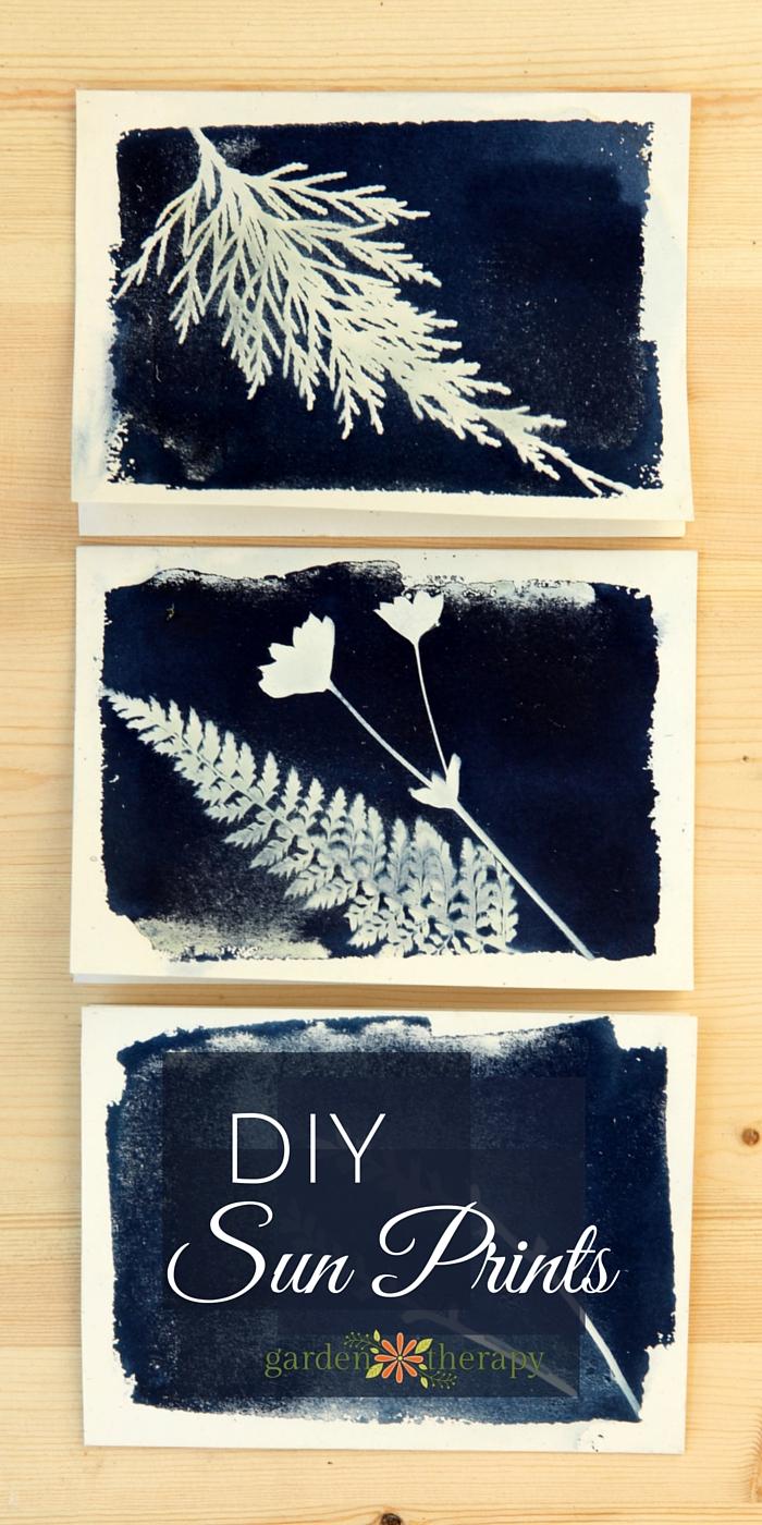 How to make sun prints