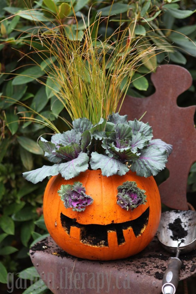 Halloween pumpkin planter