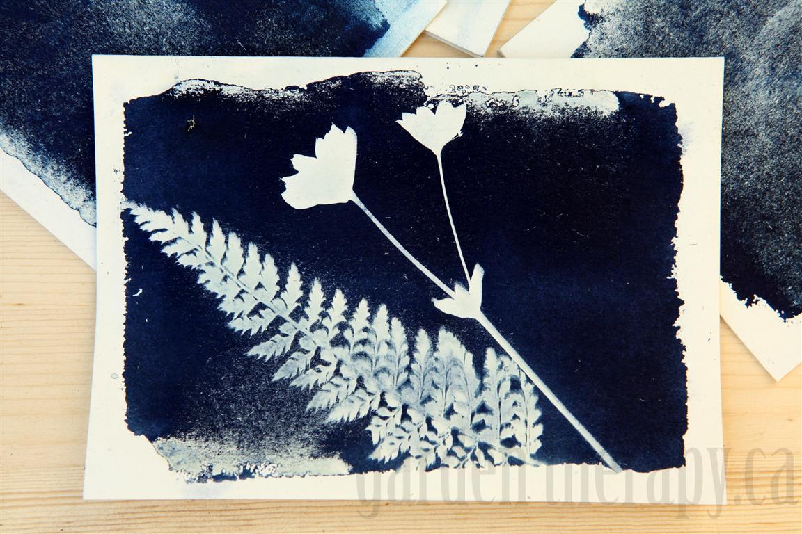 sun print card