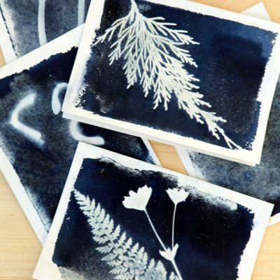 Preserve the Beauty of the Garden with Cyanotype Sun Print Cards