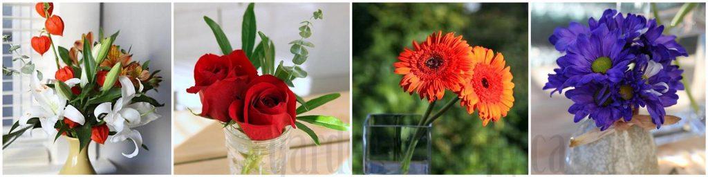 Flower Re-arranging