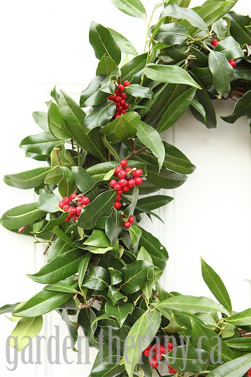 Fresh Evergreen Wreath Ideas