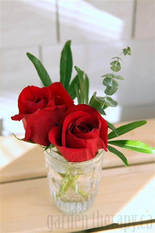 Red Roses and Eucalyptus in Mason Jar