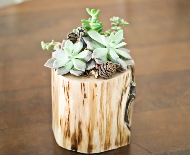 Mini Branch Planter