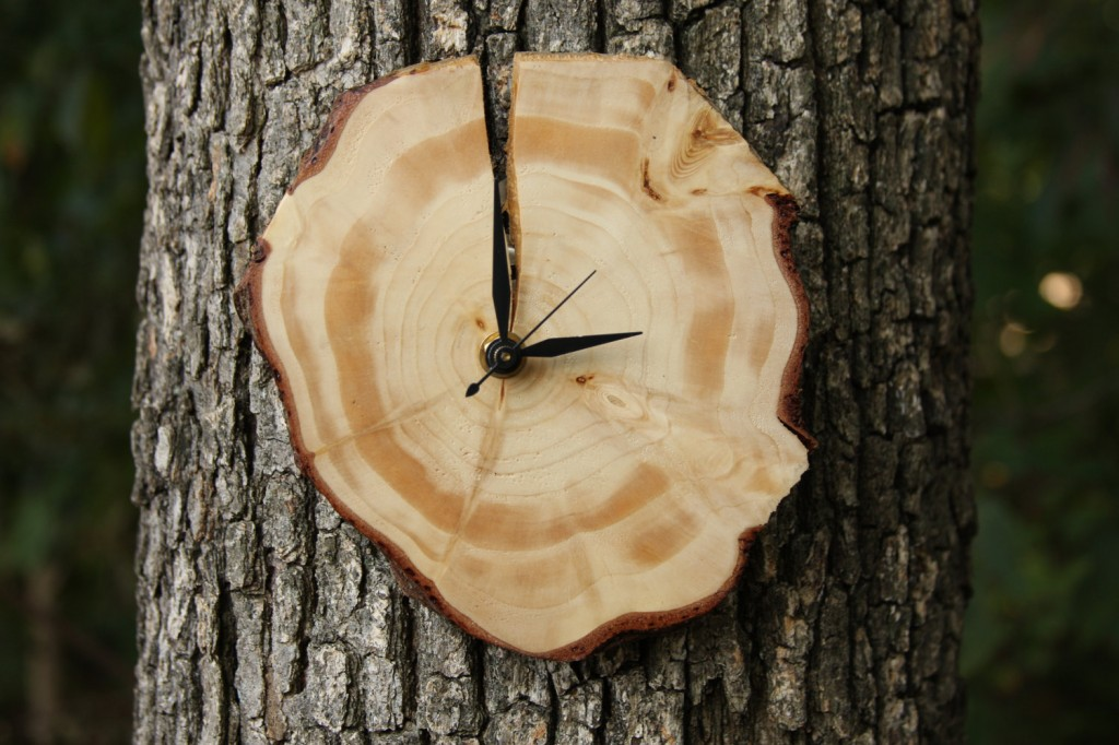 Wood Slice Wall Clock