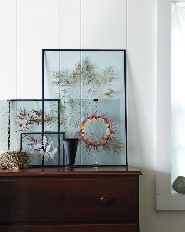 A Modern Way To Display Pressed Flowers