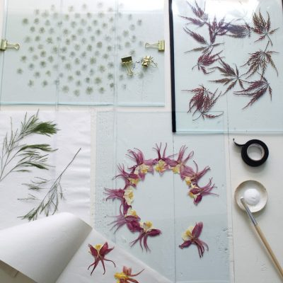 A Modern Way to Display Pressed Botanicals