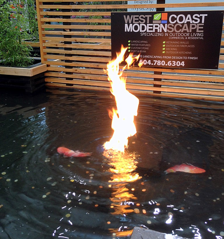 gas fire in outdoor water feature