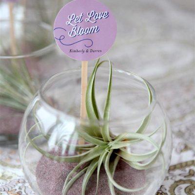 Terrarium Wedding Favors