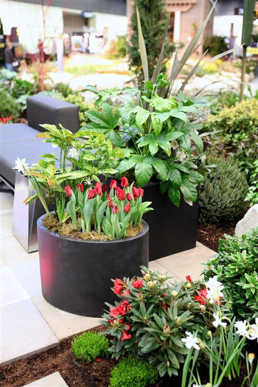 Northwest Flower and Garden Show 2013