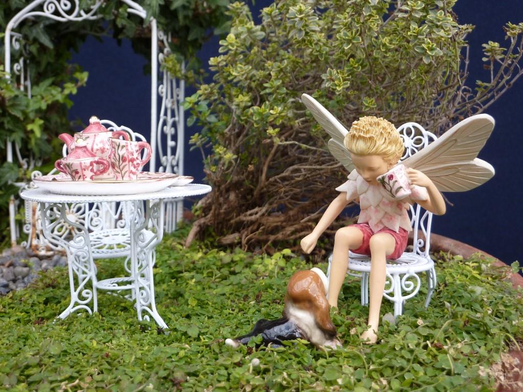 Fairy Boy and Dog Tea Party