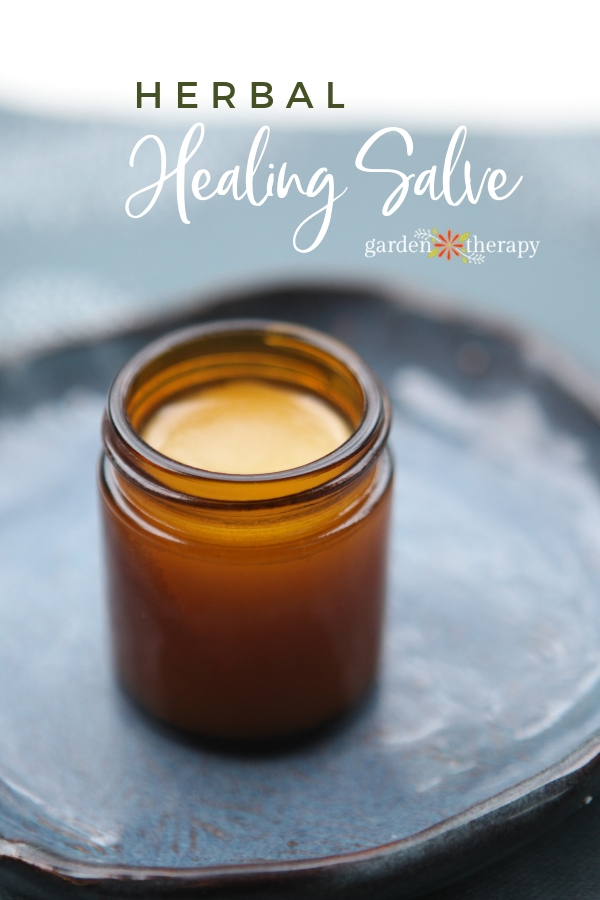 Herbal Healing Salve in a jar on a blue plate
