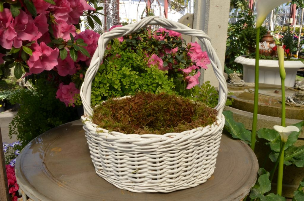 Line Easter Basket with Moss
