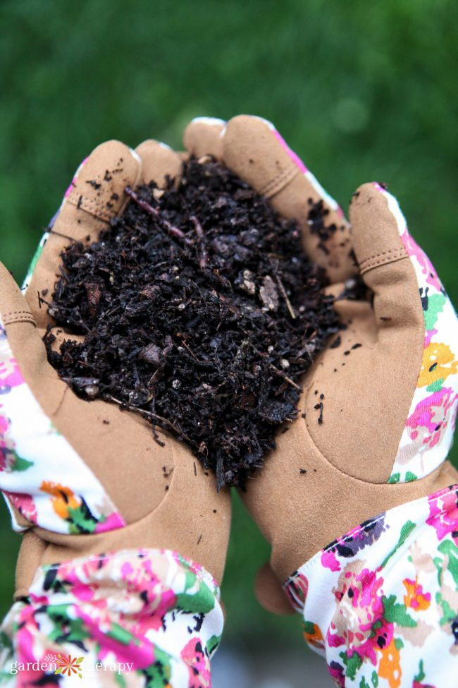 Woman with floral gloves holding soil mingled with compost tea in her hands