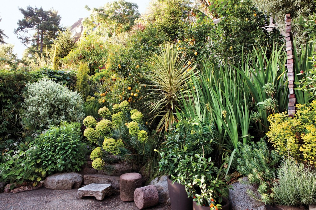 Alta Tingle's Garden photography by Katherine Wolkoff. Courtesy of Martha Stewart Living © 2013