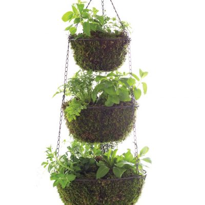 Three Tier Hanging Herb Planter