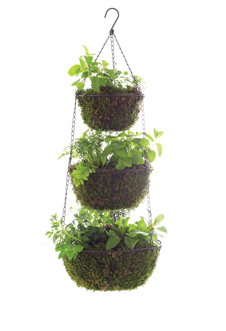 Three Tier Hanging Herb Garden