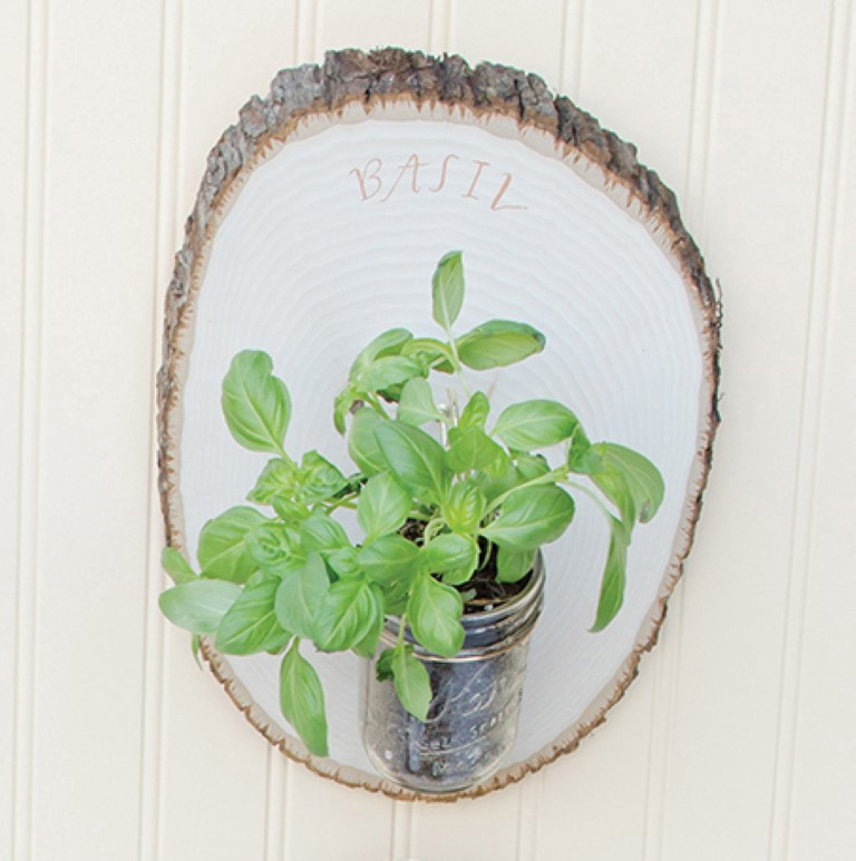 Woodland Herb Garden DIY Project from Mason Jar Crafts Basil