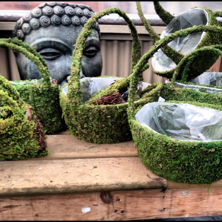 Moss Baskets Medium