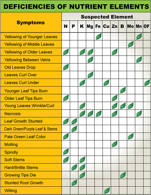 Plant Nutrient Deficiencies Chart