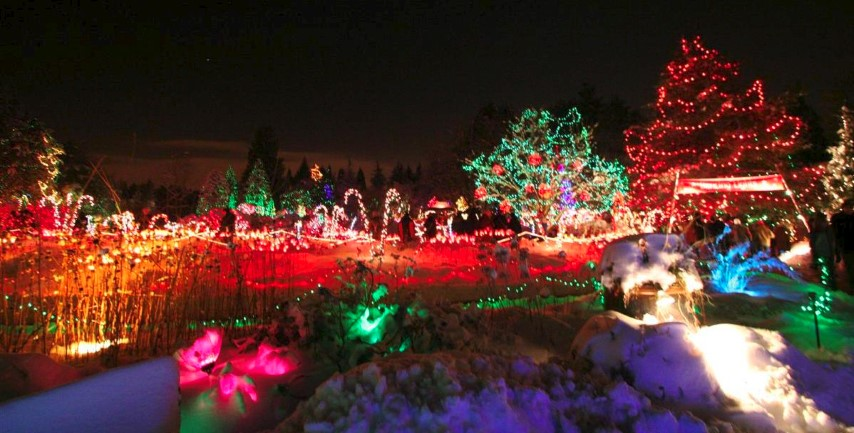 Traditional Red and Green Holiday Lights