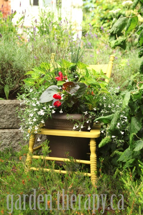 Annual Container Garden in an Old Chair via garden therapy