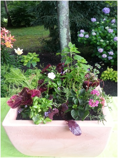 Beautiful Ornamental Edible Container Garden