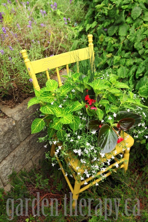 DIY Chair Planter via garden therapy