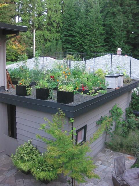 Grow up build an edible rooftop garden garden therapy for Garden on rooftop designs