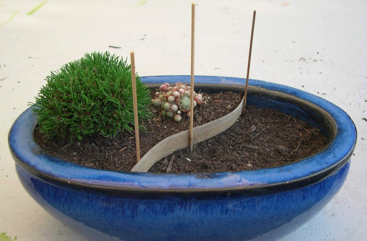 Mini Garden Patio Project Step 1