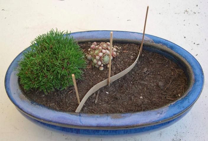 Mini Garden Prep