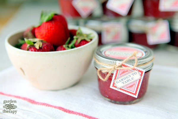 Low Sugar Strawberry Freezer Jam
