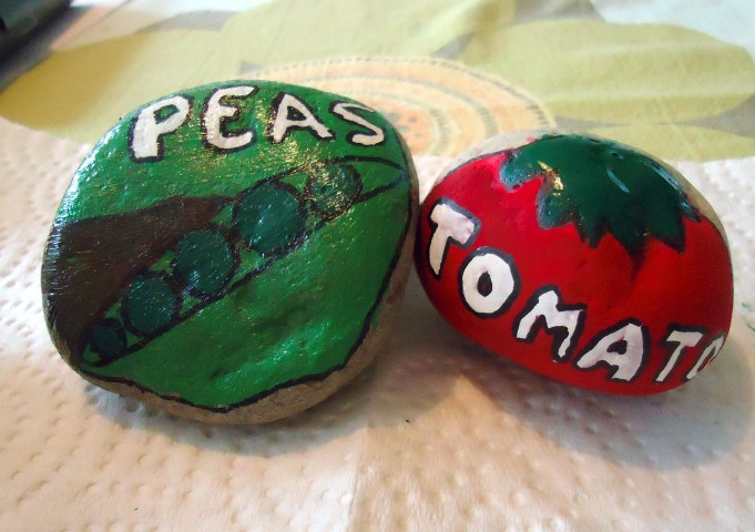 Painted Stone Vegetable Markers Step (6)