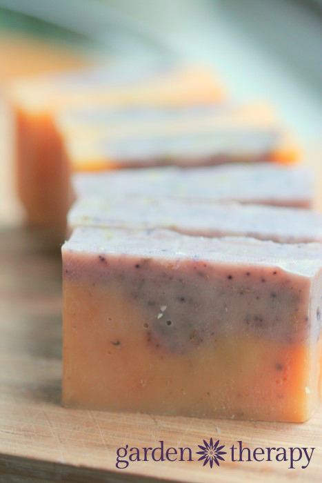 Pink Grapefruit And Lavender Handmade Cold Process Soap Recipe