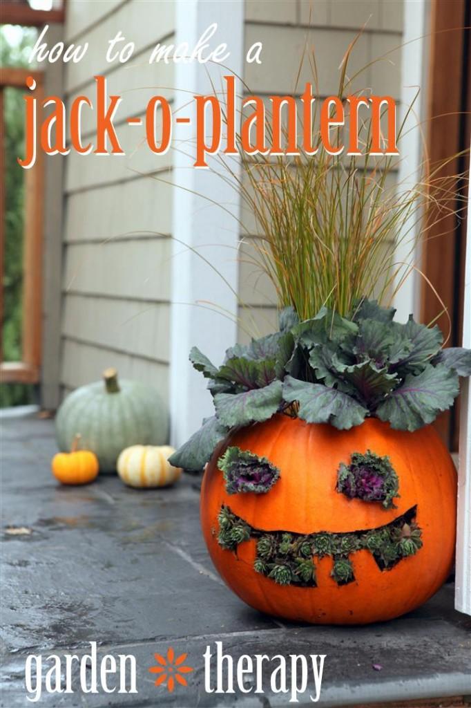 How to Make Jack o Planterns