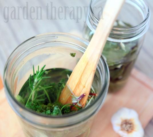 Infusing herbs into vinegar