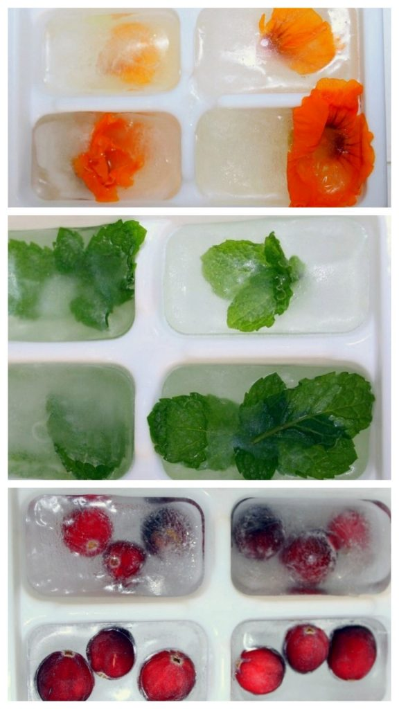 Mint Nasturtium Lemon and Cranberry Ice Cubes