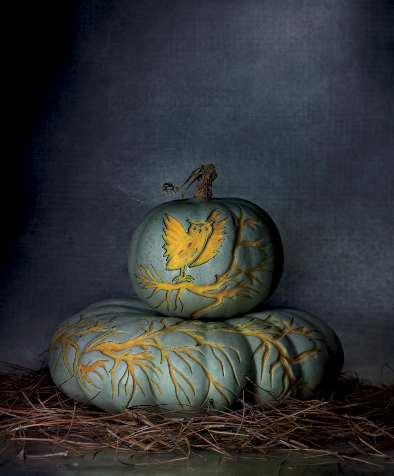 etched pumpkin carving design - blue owl