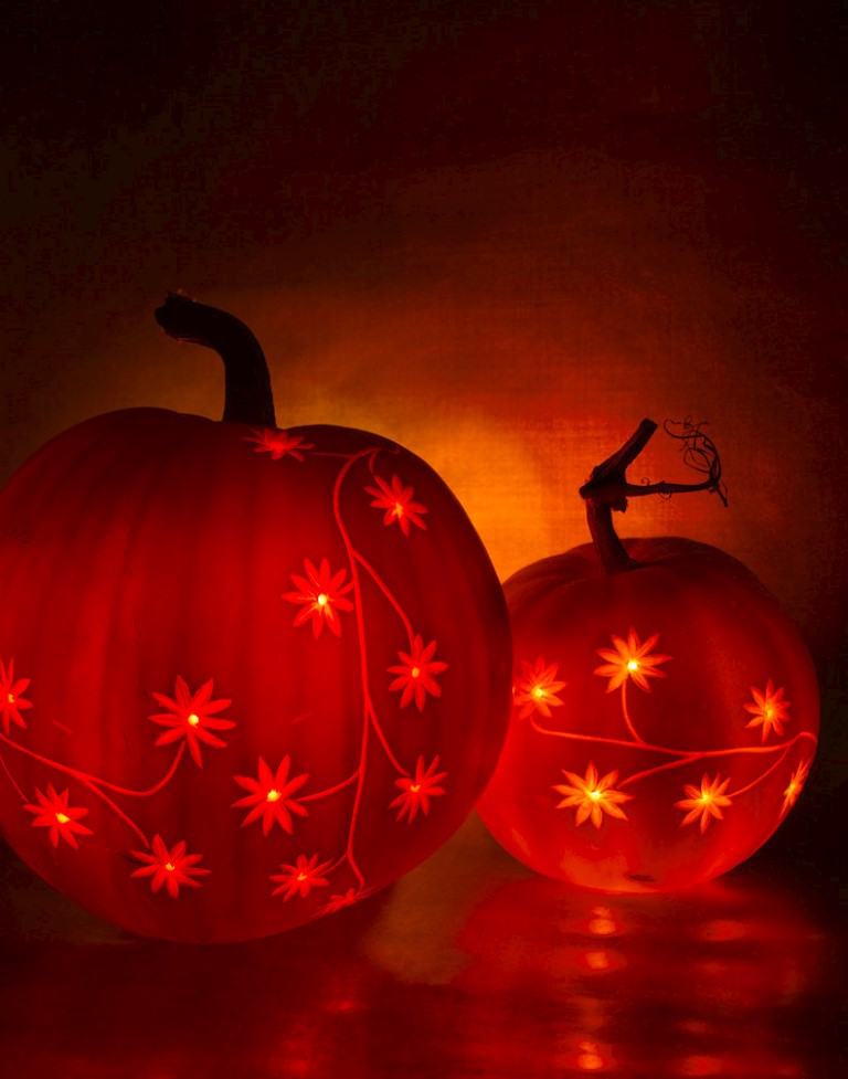 etched pumpkin carving design - double daisy