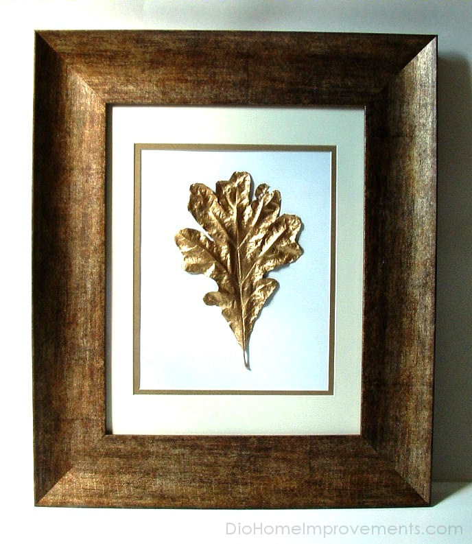 Gold Leaf Whiteoak