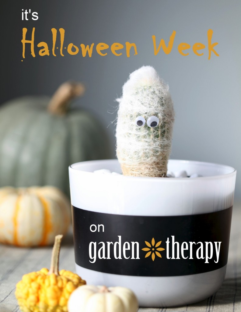 halloween week on garden therapy
